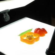 Rosco Комплект на базе светодиодных панелей, фото и видео студия №203