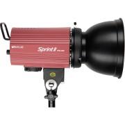 Моноблок Raylab SPRINT II RTD-500