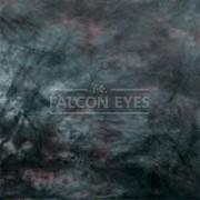Тканевый фон Falcon Eyes BC-132 ВС-2770