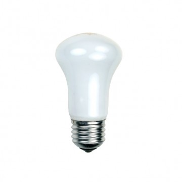 Галогеновая лампа Elinchrom 100Вт E27 для BXRi/D-Lite/BRX 23002